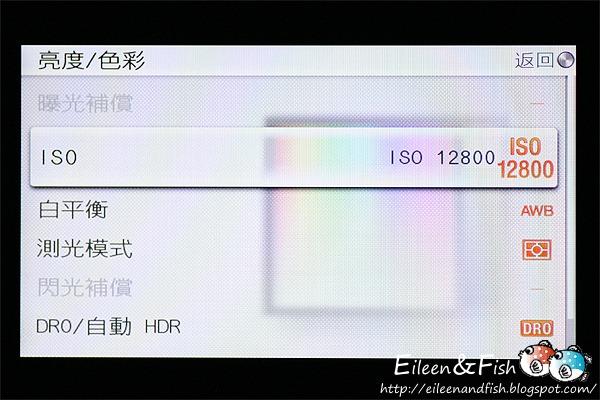 20100703-NEX5-3-15