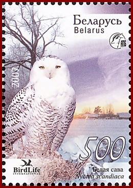 bel200709l