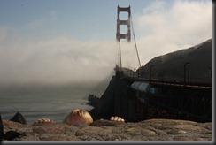 San Francisco (188)