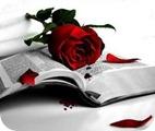 rosa-en-el-libro[1]