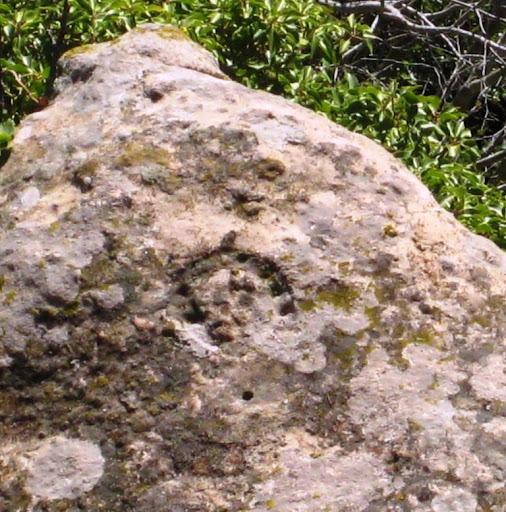 Roca de la Ferradura d'Escornalbou