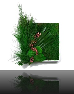 tableau_vegetal_30_2