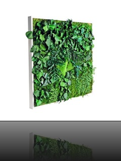 tableau-vegetal-matigreen-meamea