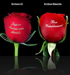 Cuisine style cadeau saint valentin femme - Emballage cadeau saint valentin ...