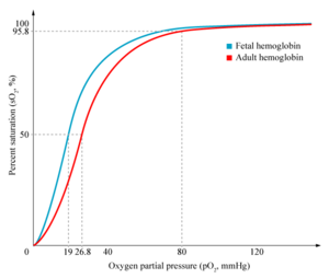 300px-HbA_vs_HbF_saturation_curve.png