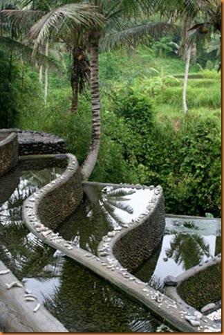 bamboos4