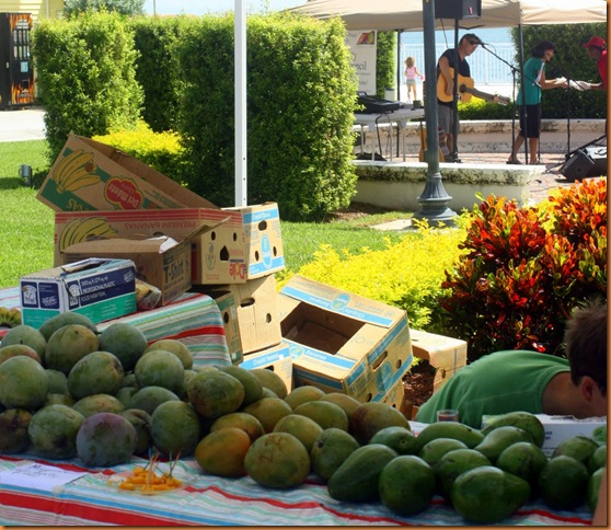 farmersmarket 008-1