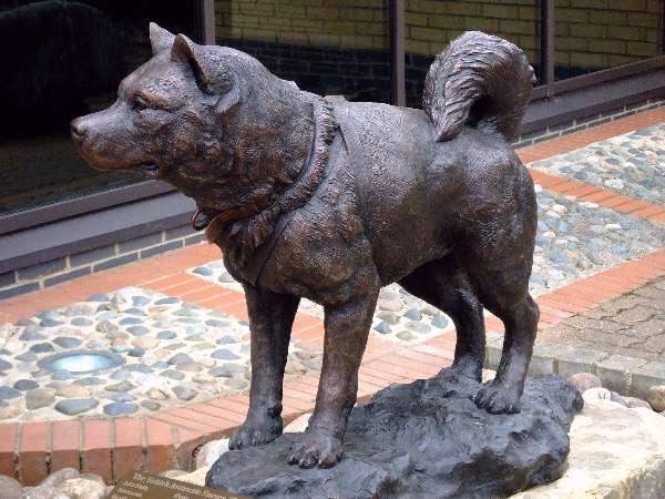 Sledge Dog Memorial