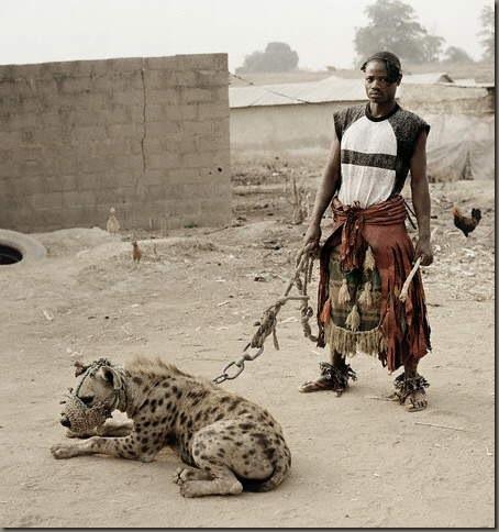 african madaari hiena