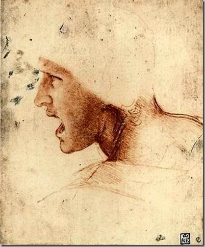 Leonardo Da Vinci Dibujos (5)