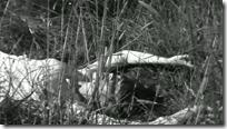 vlcsnap-2010-09-26-21h18m13s137