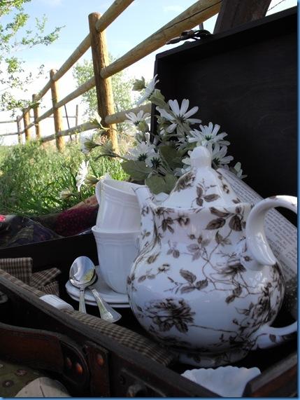 teapot outside 052