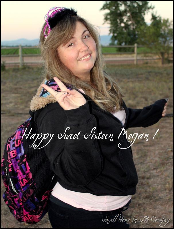 Megan Sweet 16