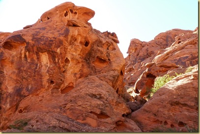 2010-10-08 - AZ, Valley of Fire State Park - 1025