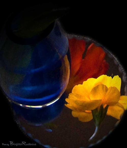 blommor_20110207_G9_1b