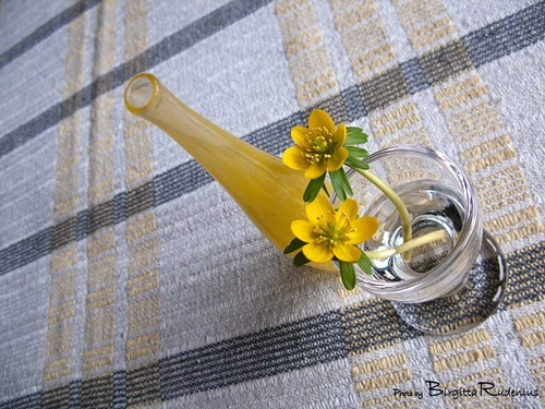 blom_20110314_utslagen