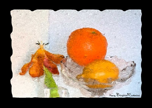 chip_20110213_apelsin