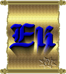 1-ely04