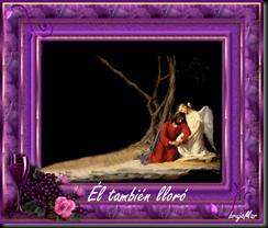 ElTambienLloro_2010