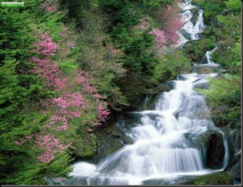 ELTALLERDELABRUJAMARTochigi Prefecture Japan