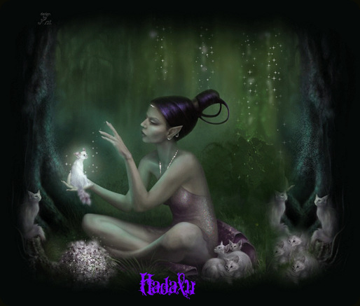 Hadalu_viole011