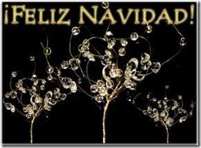 CosasQue_Navi611