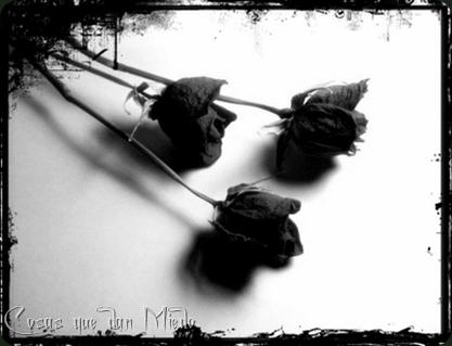 DeBrujaMar-flores negras18