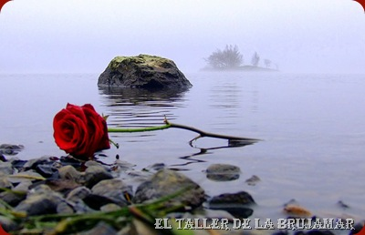 FloresRojas-ElTallerdeLaBrujaMar-0503