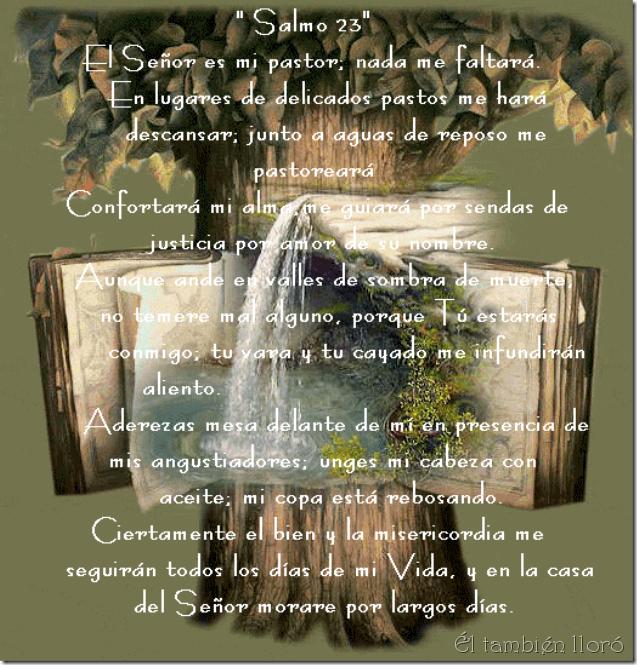 Salmo-ÉlTambienLloró-0504