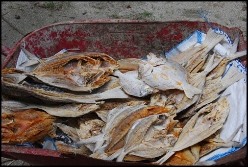Mapia Dried Fish