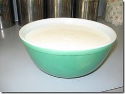 yogurt 06