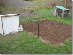 garden tilled 05