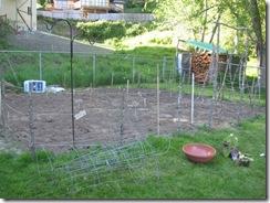 garden in 01
