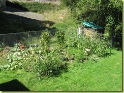 garden round 2 07