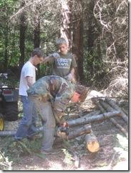 woodcutting 04