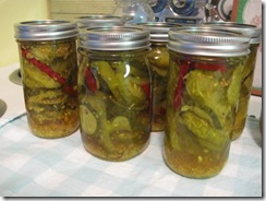 spicy pickles 05