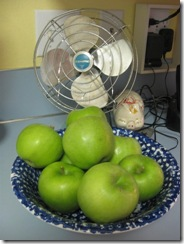 apples and onions 02