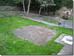 garden gone 11