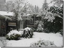 first snow 20