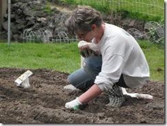 first garden  10