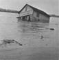 flood3