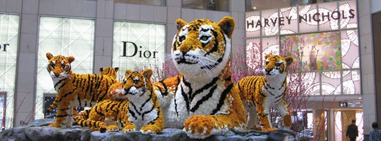 tiger in HK made of flowers