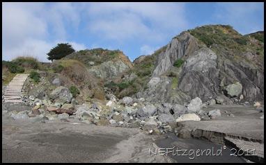 IMG_5787 Franciscan MelangeAtShell Beach
