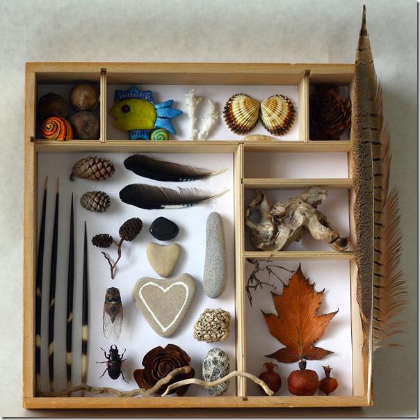 natura in scatola-1