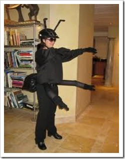 disfraz-hormiga