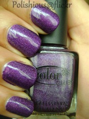 Color Club - Wild at Heart_wm