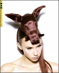 Animal hair 2