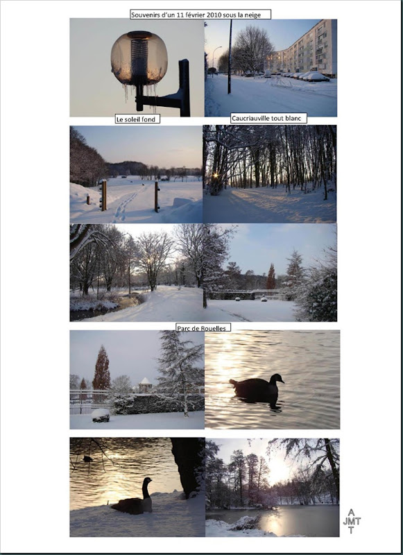 neige-jeudi-11-fevrier-2010-13H25BW