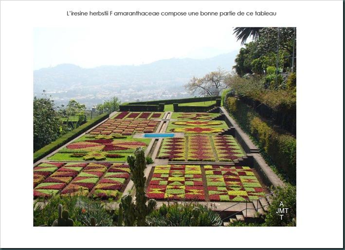 16-funchal,-le-jardin-botanique 4 page 1BW