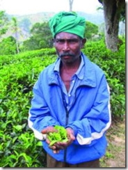SriLanka-LocalFarmer
